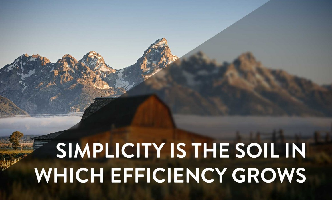 Simplicity is the soil in which efficiency grows