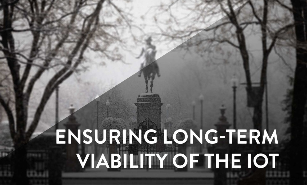 iot long term viability