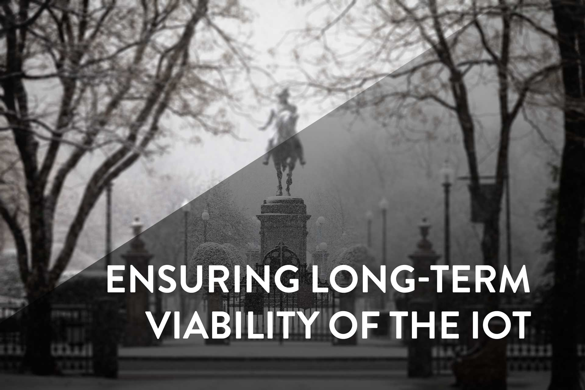 iot long term viability