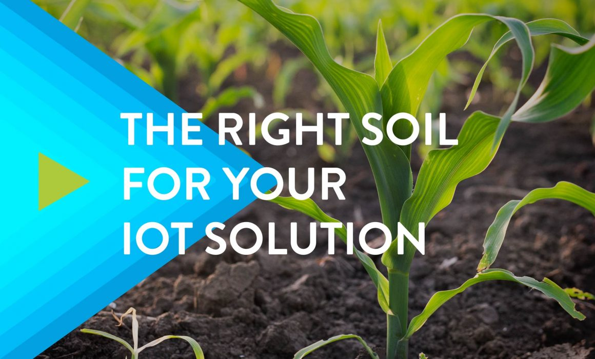 The-Right-Soil-for-Your-IoT-Solution-Featured-Image
