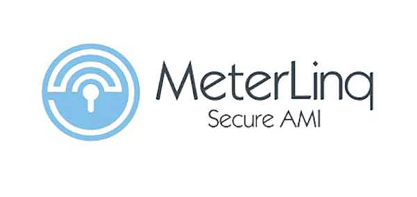 MeterLinq RPMA Catalog